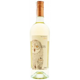 Купити Вино Asio Otus біле...