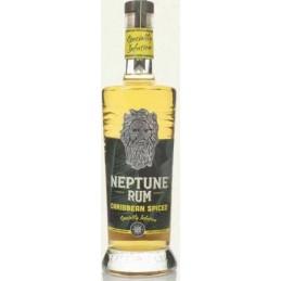 Купити Ром Neptune Spiced...